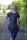 Scorpion Bay Damen T-Shirt WTE3028